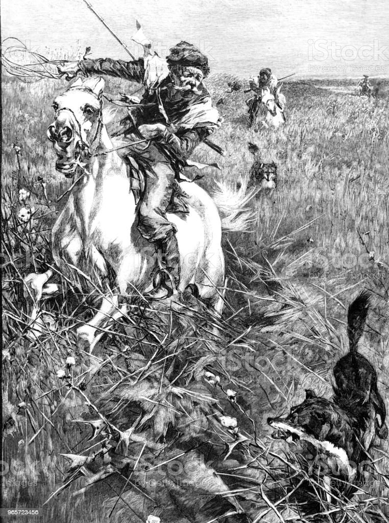 Hunting man on a horse - Royalty-free 1890-1899 stock illustration