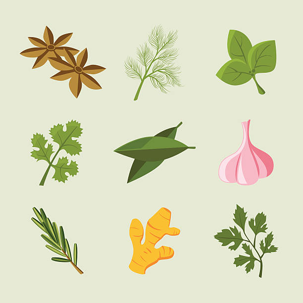 Icon Set: Herb & Spice Icons Herb & Spice icons basil stock illustrations
