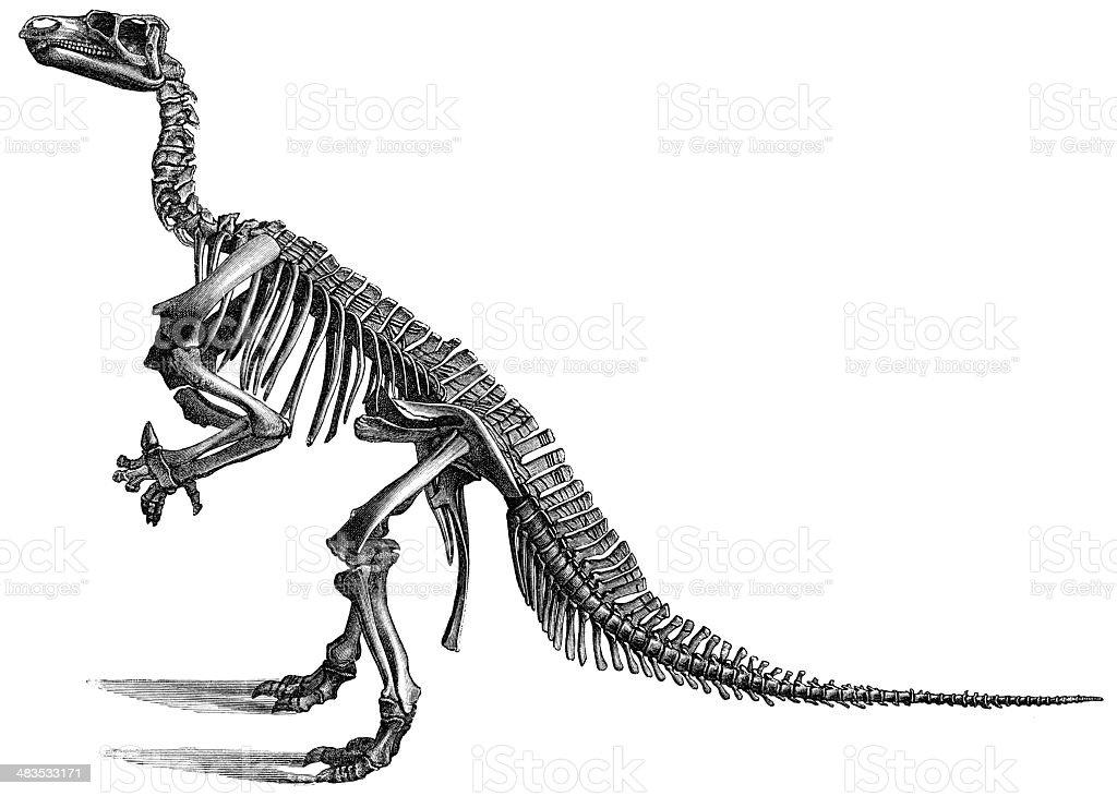 iguanodont royalty-free stock vector art