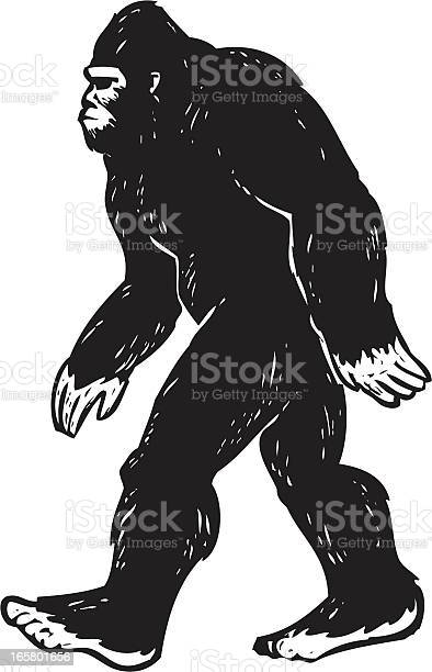 Illustrated bigfoot illustration id165801656?b=1&k=6&m=165801656&s=612x612&h=nccdl9d76wajhr9wn6veg9kl ojh5cfcslrum2nn e0=
