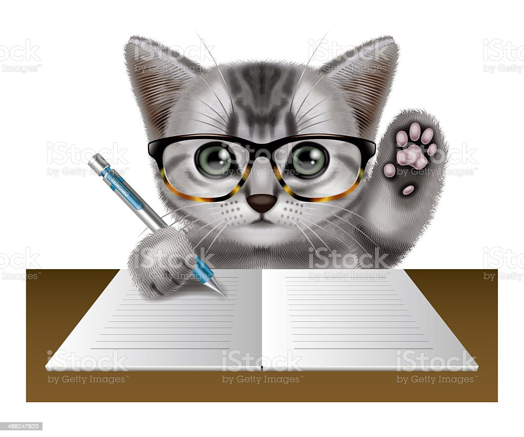 Cat essay writer