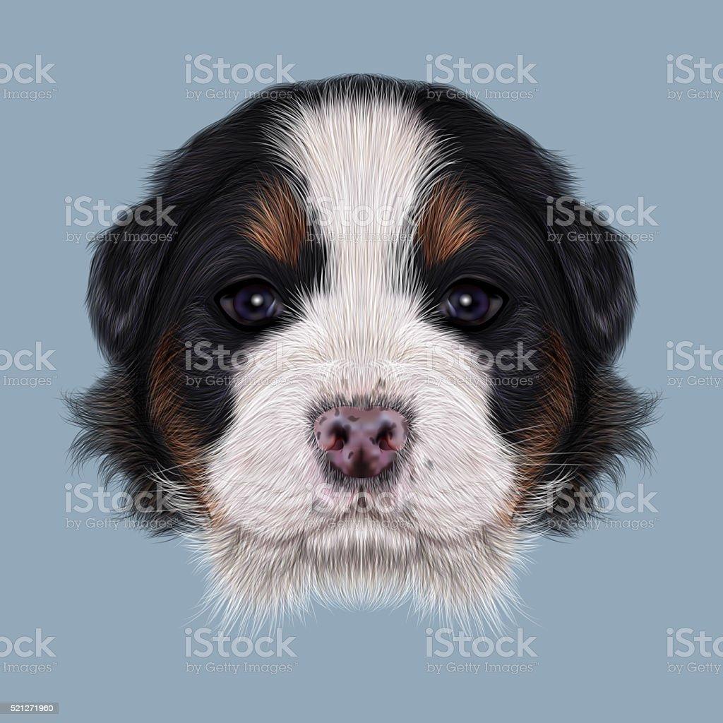 Illustrated portrait of Bernese Mountain puppy. vector art illustration