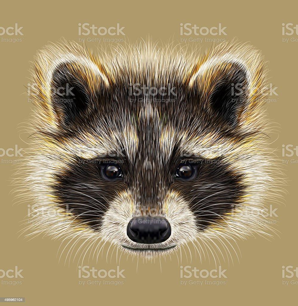 Illustrated Portrait of Raccoon - Royalty-free 2015 stock illustration
