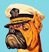 istock Illustration of a boxer dog wearing a captain's hat 473622490