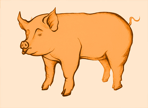 Illustration of a figure of a pig drawing a sanguine in retro style