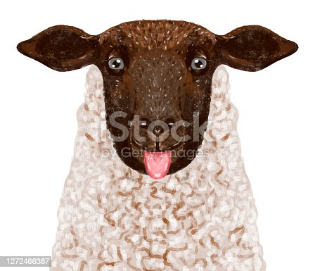 istock illustration of a portrait of a funny sheep showing tongue. Playful funny animal 1272466387