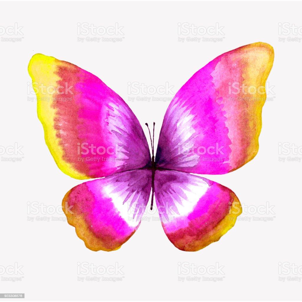 Bir kelebek uygulaması nasıl yapılır