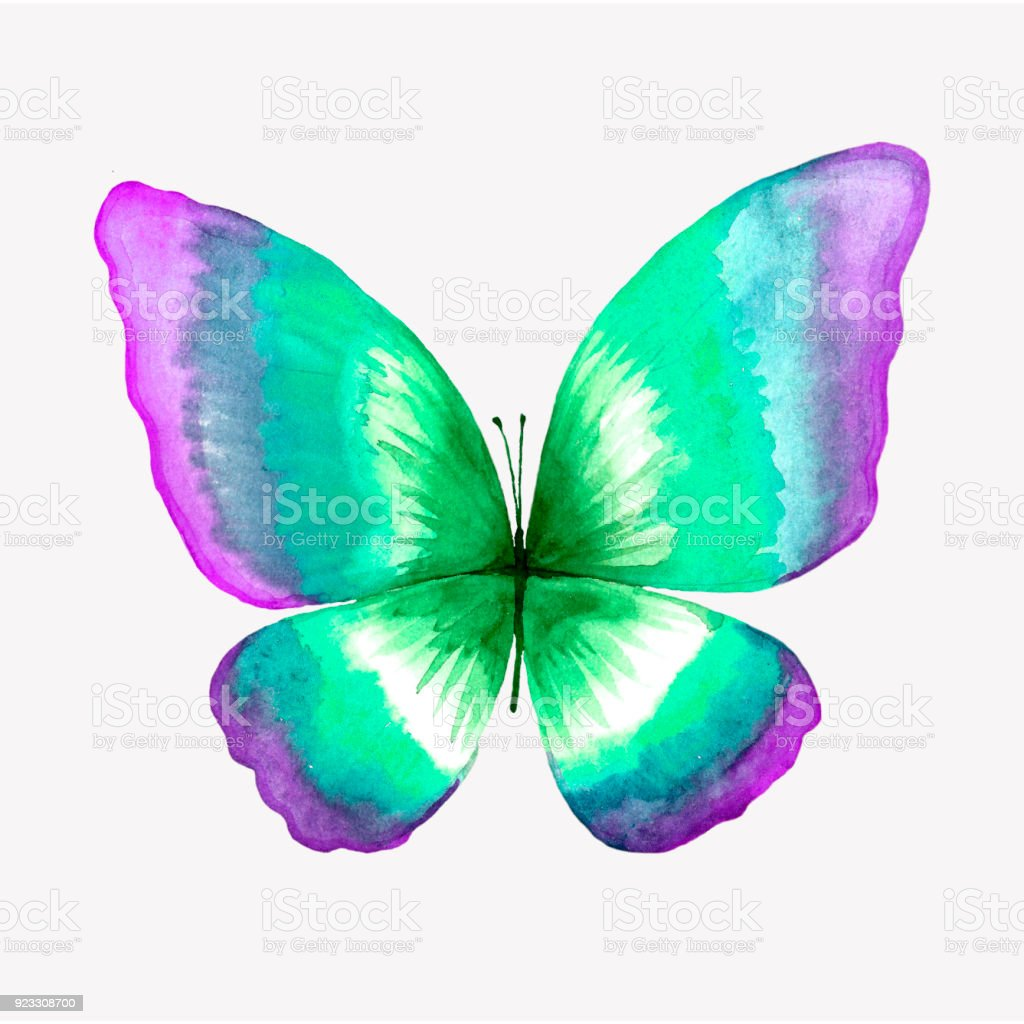 Illustration Of A Watercolor Butterfly Stock Illustration