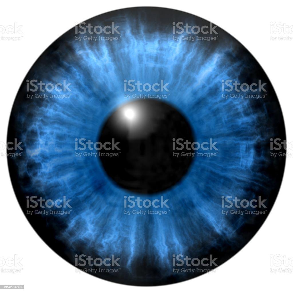 Illustration of blue eye iris, light reflection. vector art illustration