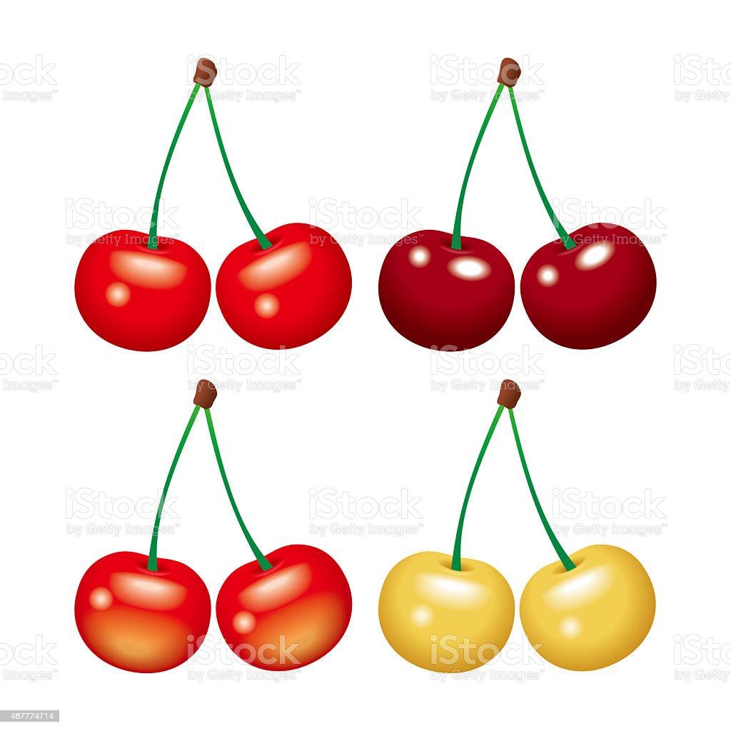 royalty free rainier cherry clip art vector images illustrations rh istockphoto com clip art cherry tomatoes clip art cherry blossoms free