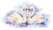 イラストのカップルのホワイトの白鳥