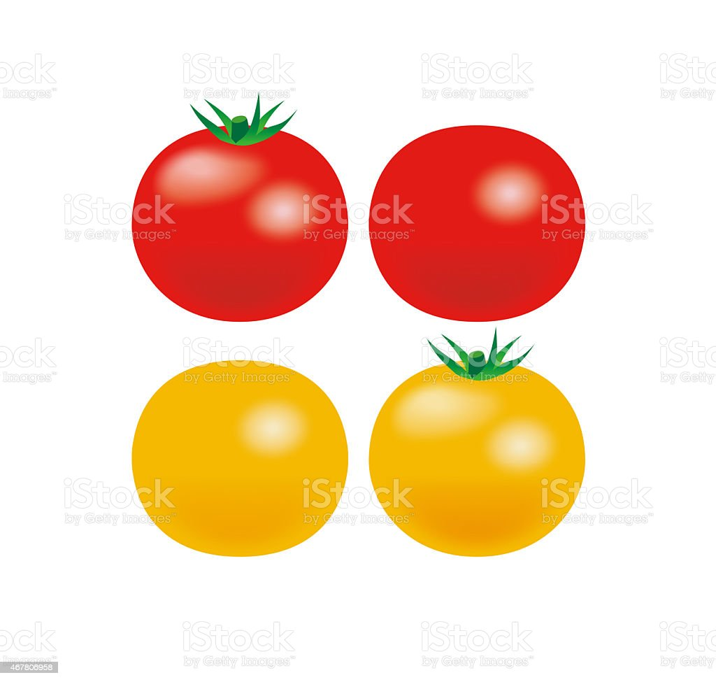 Illustration of four tomatoes.  Red and yellow. vector art illustration