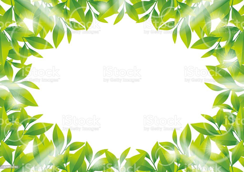 Illustration of frame of tea leaf. vector art illustration