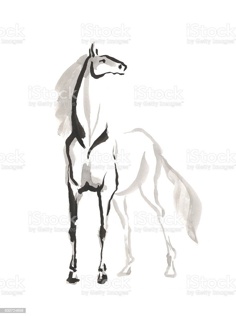 illustration of horse vector art illustration