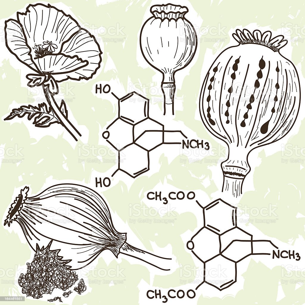 Illustration of narcotics - poppy and opium royalty-free illustration of narcotics poppy and opium stock vector art & more images of addiction