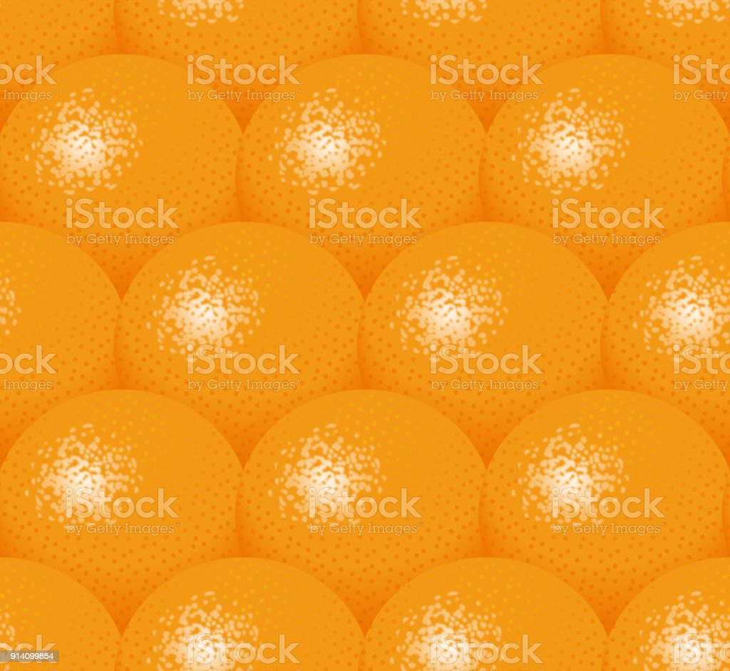 Illustration of oranges. vector art illustration