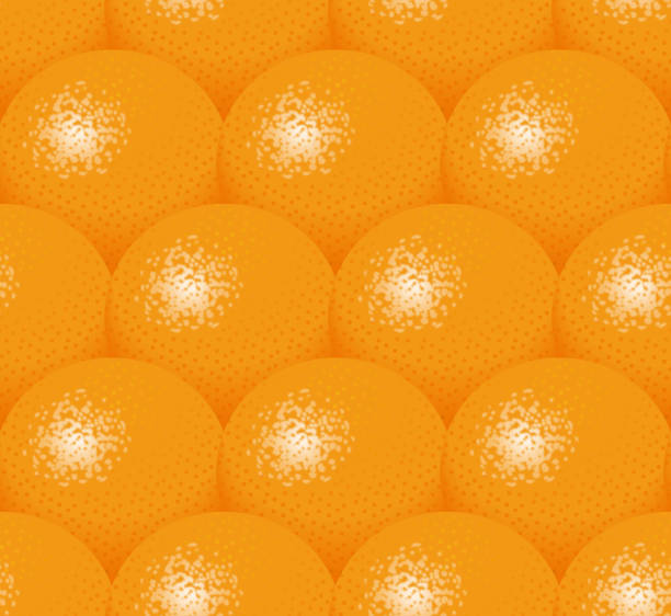 Illustration of oranges. vector art illustration