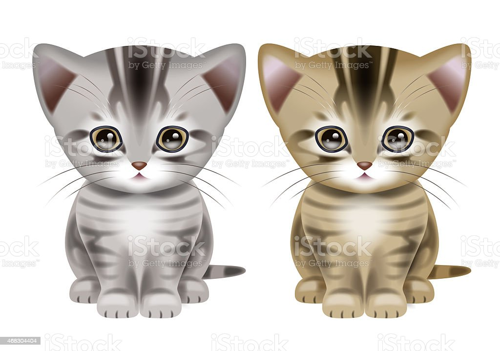 Illustration of Shorthair Cats. vector art illustration