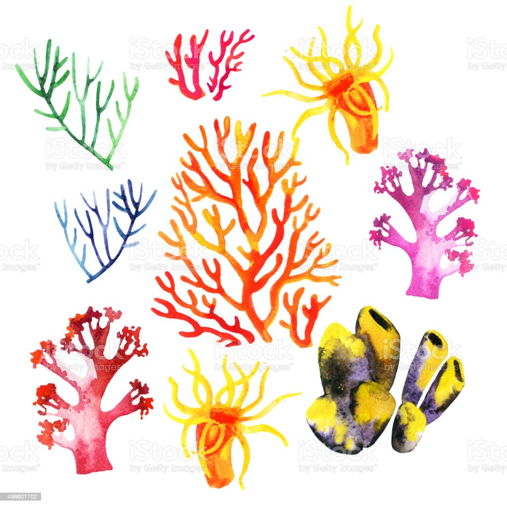 Illustration Of The Colorful Coral Reefs Stock Vector Art 498601702
