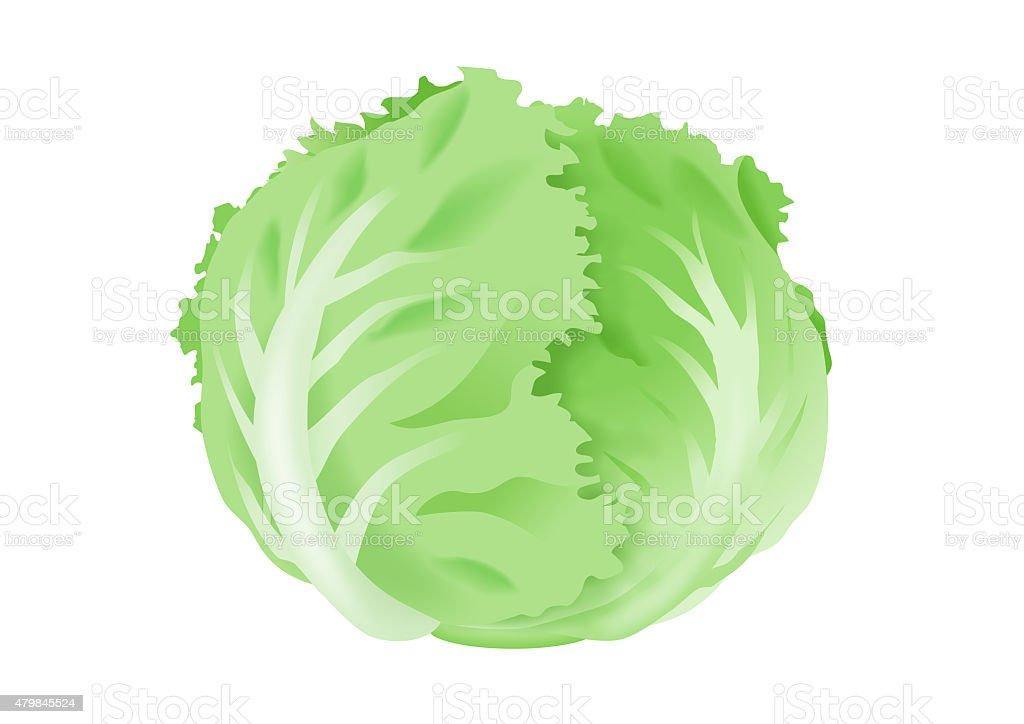 royalty free iceberg lettuce clip art vector images illustrations rh istockphoto com lettuce free clip art iceberg lettuce clipart