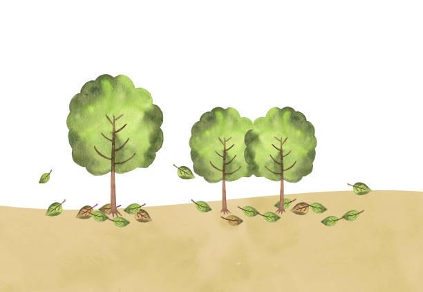 illustrazioni stock, clip art, cartoni animati e icone di tendenza di illustration of trees - forest bathing