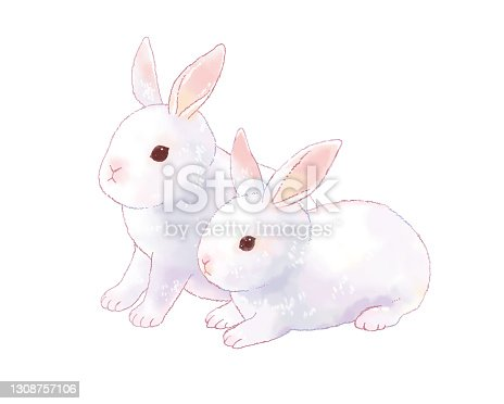 istock Illustration of two cute and realistic rabbits. 1308757106