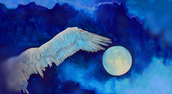 Illustration painting watercolor full moon wing flying free bird on the background of the night blue sky with clouds
