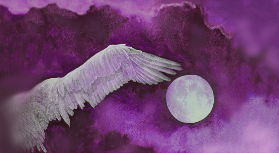 Illustration painting watercolor full moon wing flying free bird on the background of the night purple sky with clouds