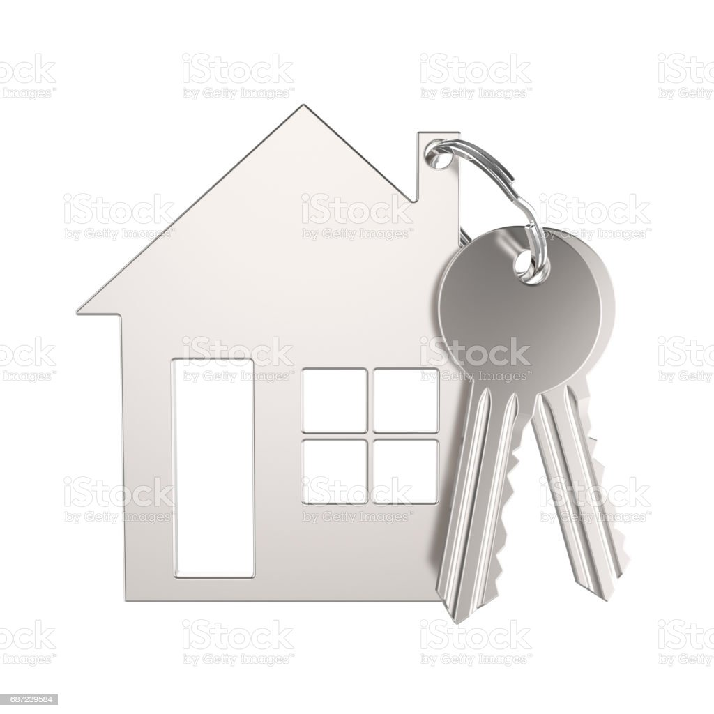3d illustration silver gold key with keychain in the form of a small