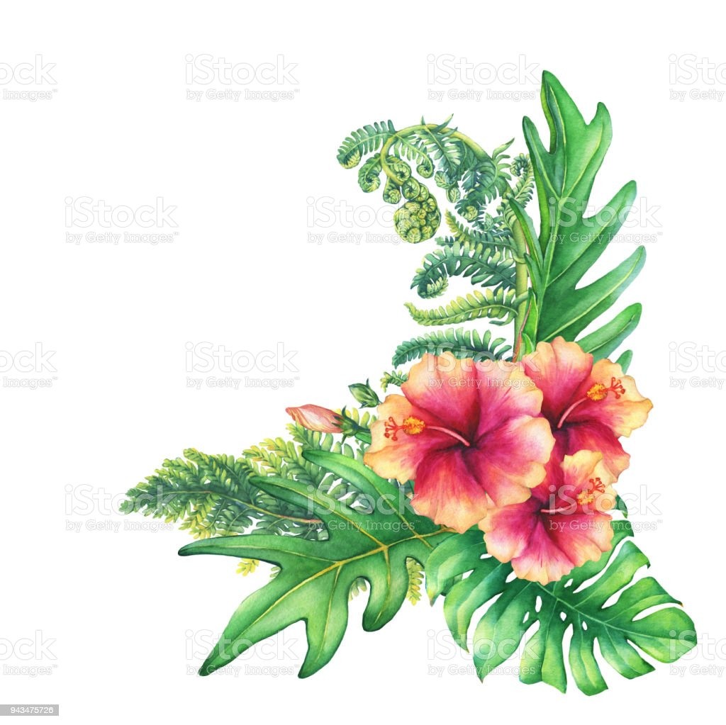 Ilustration Of A Bouquet With Yellowpink Hibiscus Flowers And ...