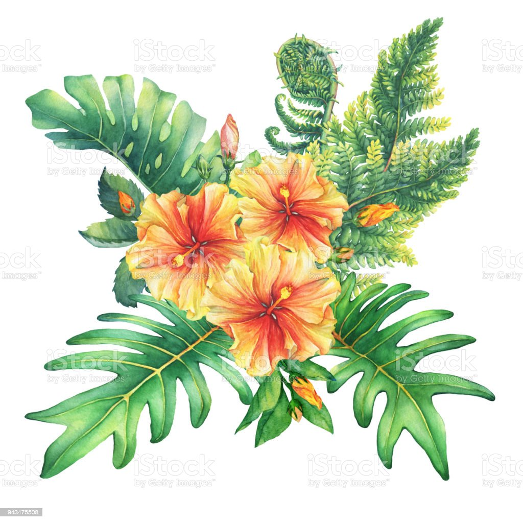 Ilustration Of A Bouquet With Yellowred Hibiscus Flowers And ...