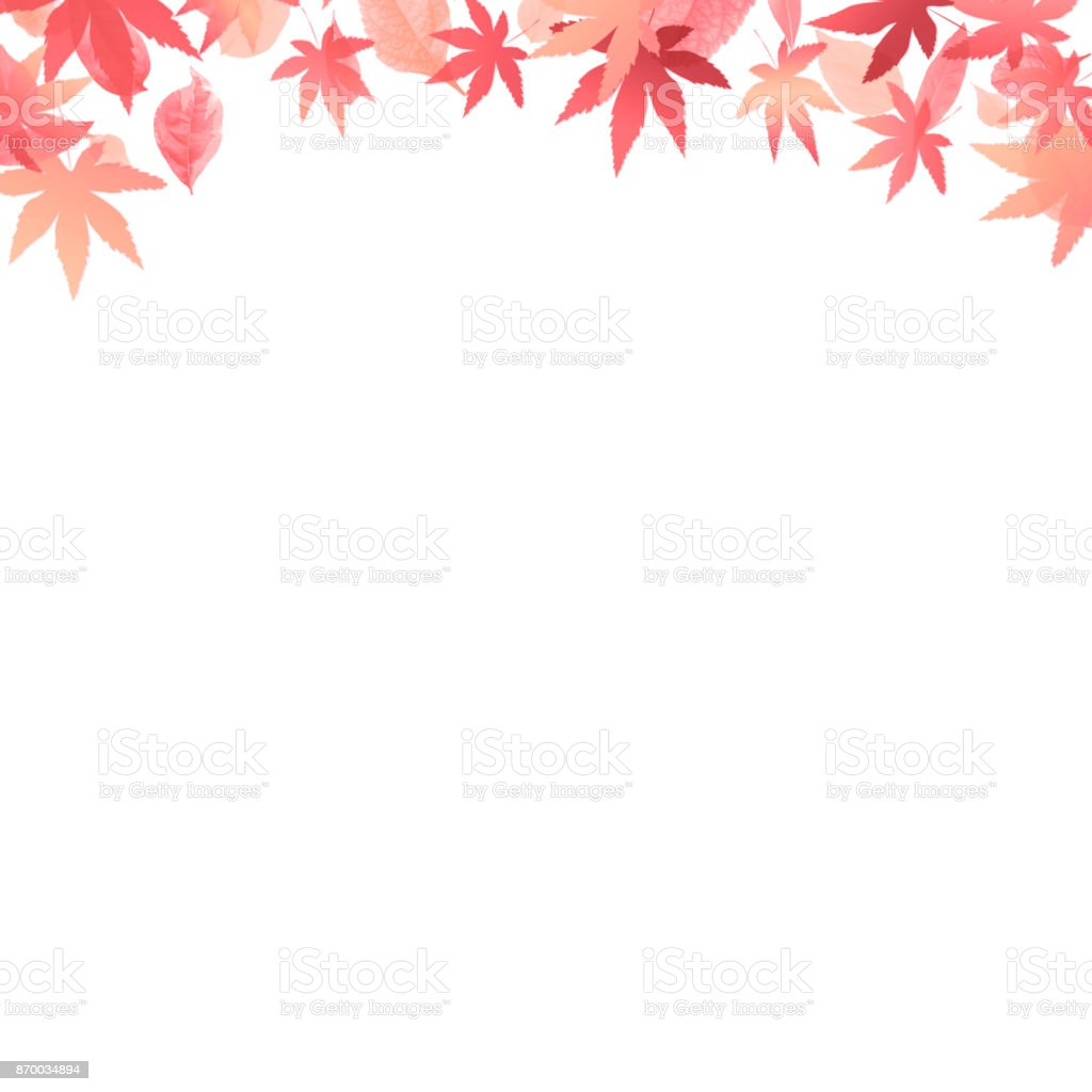 image of autumn, maple leaves white background vector art illustration