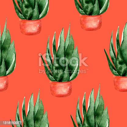 istock Indoor succulents on red background watercolor seamless pattern. 1318150077