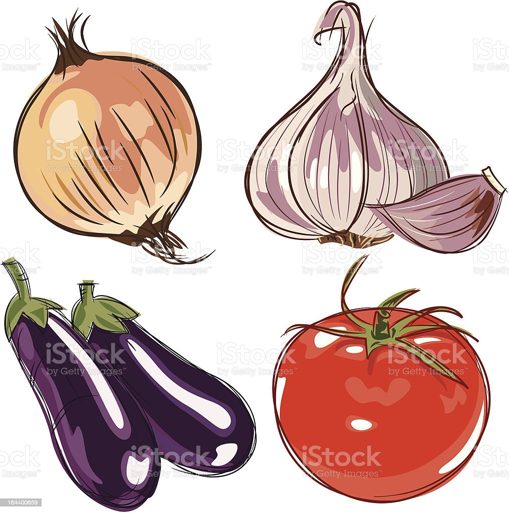ingredients illustration vector art illustration