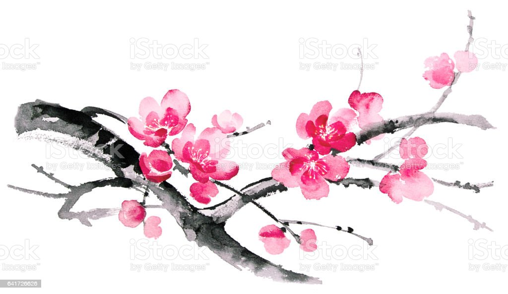 royalty free cherry blossom tree clip art vector images rh istockphoto com cherry blossom clipart images cherry blossom clip art borders