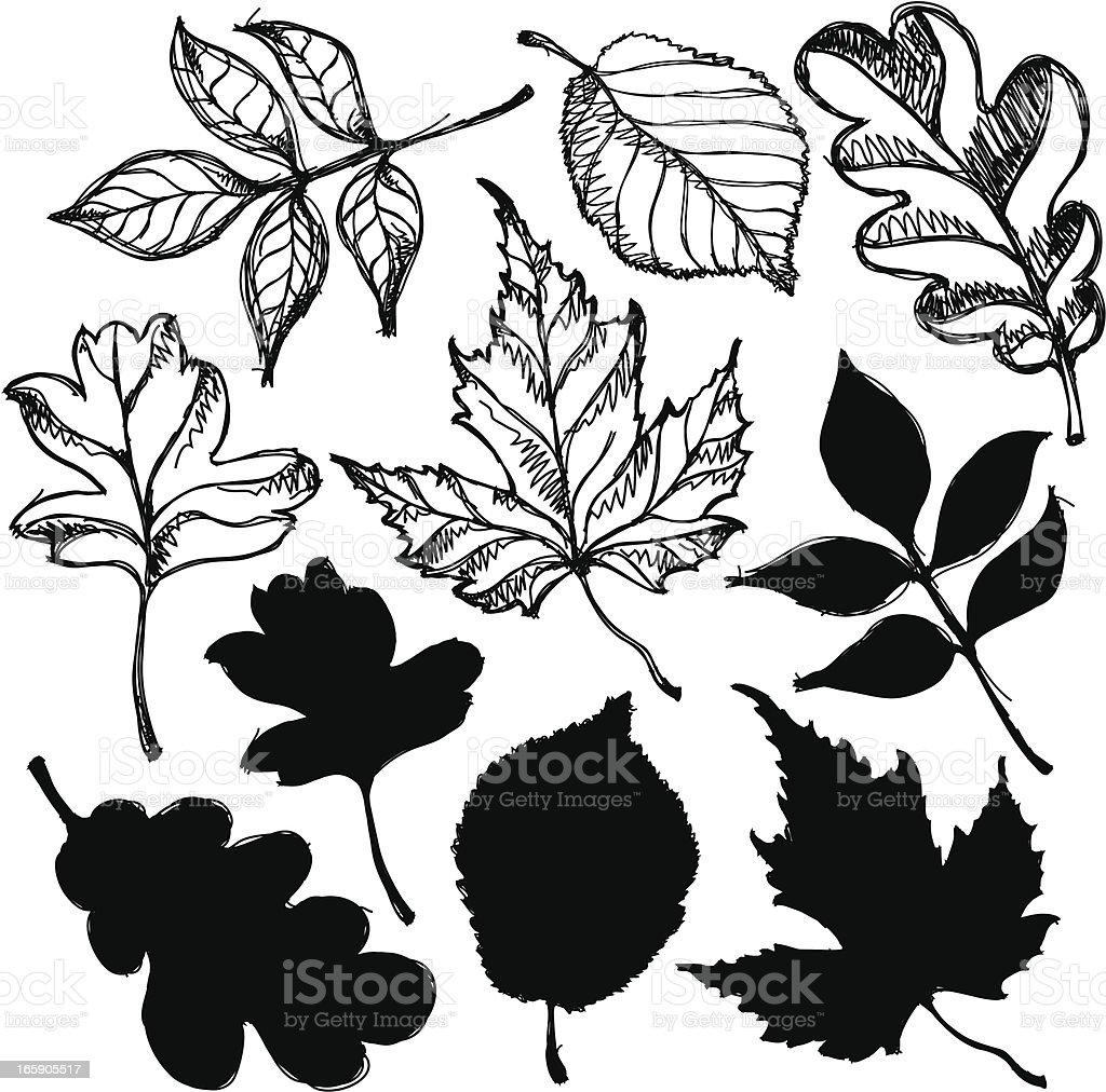 Ink Leafs royalty-free stock vector art