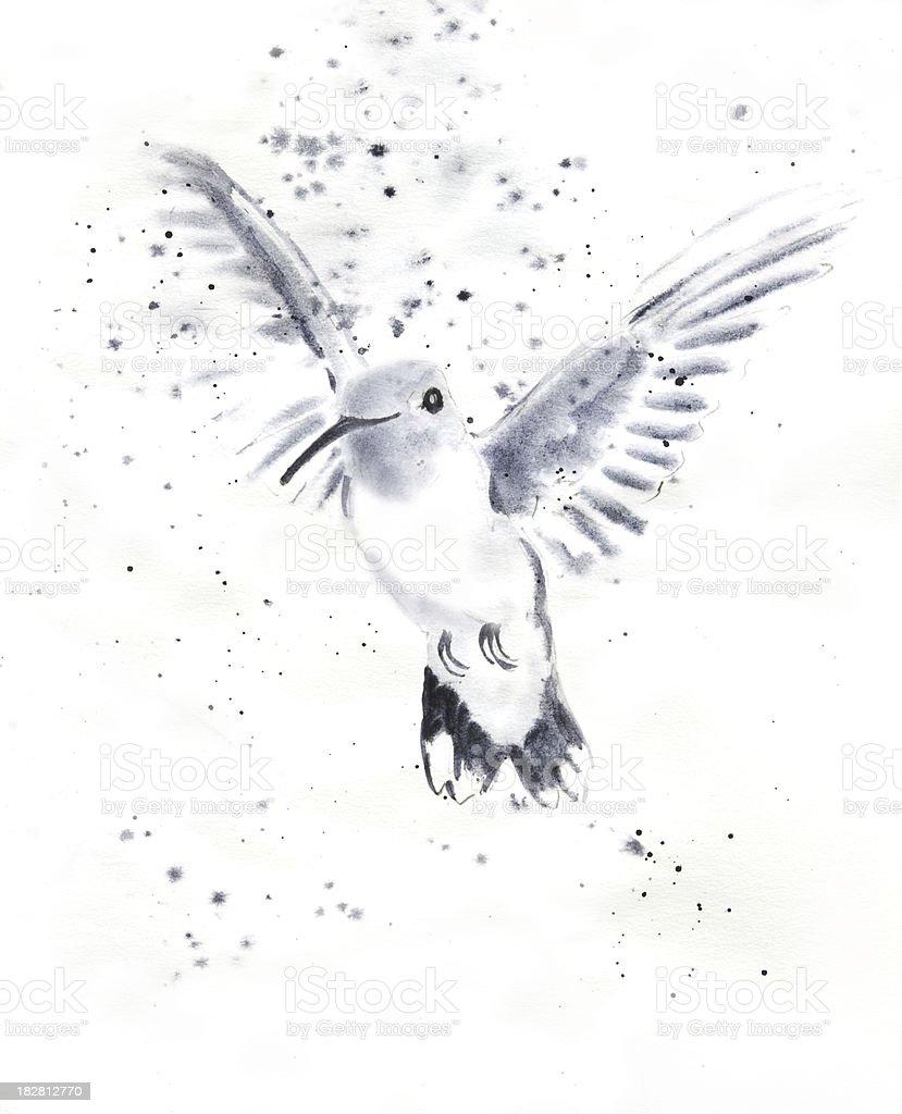 Inquisitive Hummingbird vector art illustration