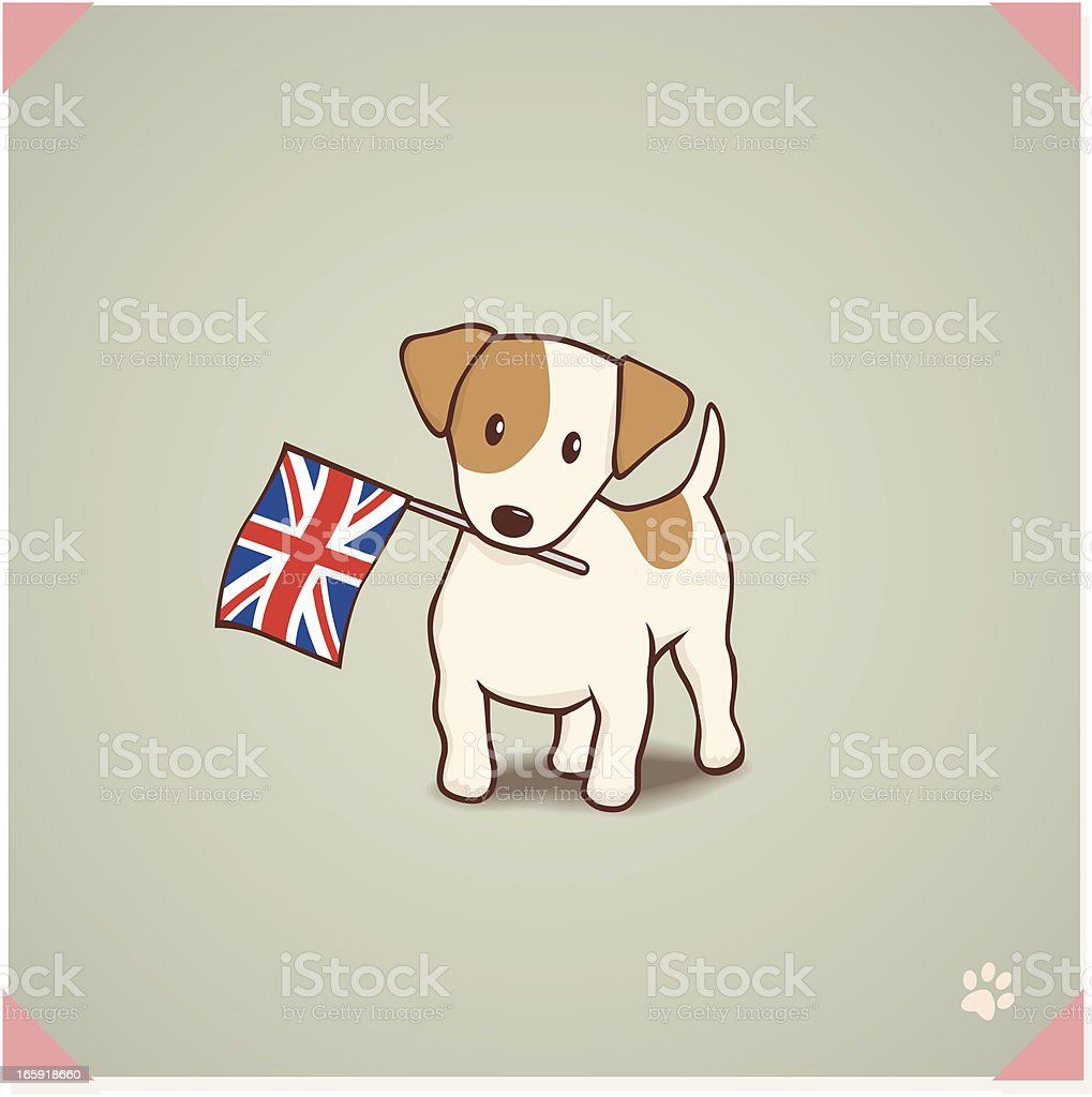 Jack Russell Terrier with Union Flag royalty-free jack russell terrier with union flag stock vector art & more images of animal