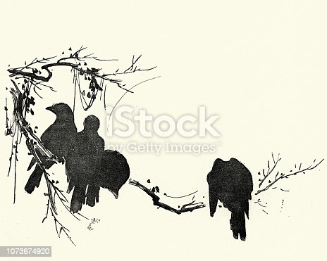 Vintage engraving of Japanese Art, Sketch of crows sitting on a branch
