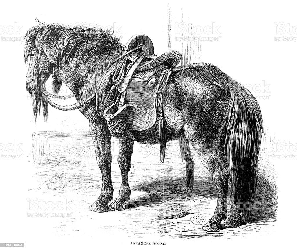 Japanese Horse royalty-free stock vector art