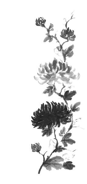 Japanese style sumi-e dark and light chrysanthemum ink painting.