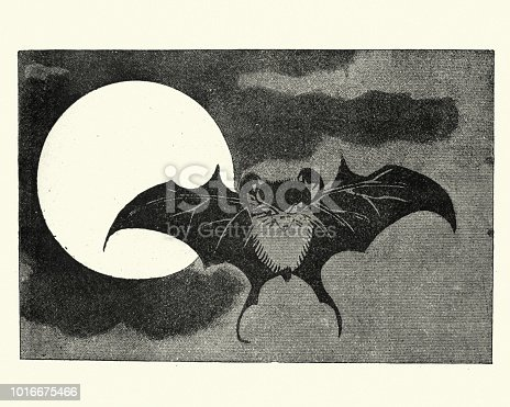 Vintage engraving of a Japanesse Art, Bat flying across face of the moon