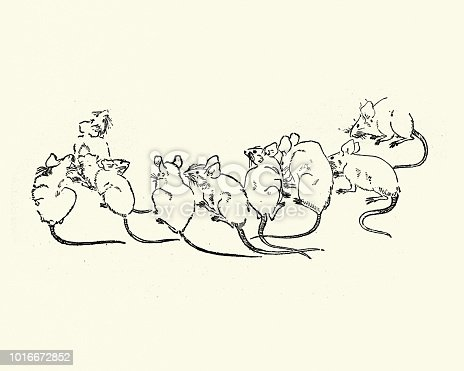 Vintage engraving of a Japanesse Art, Swarm of Rats or Mice, 19th Century