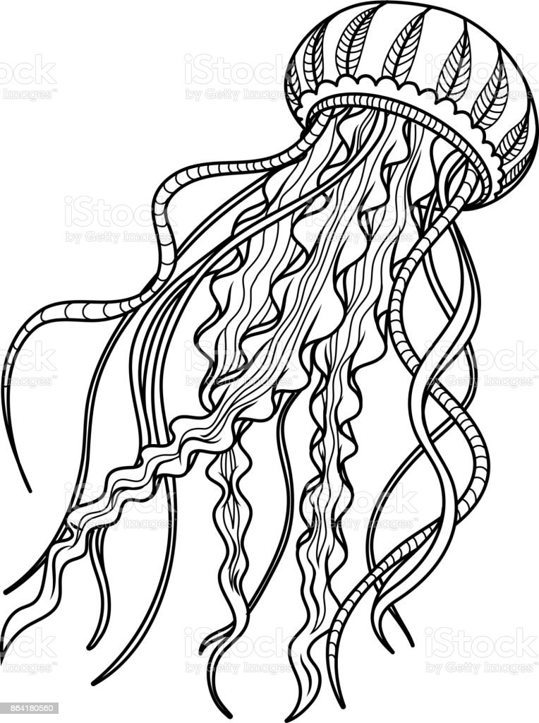 Jellyfish antistress. Hand drawn sketch for adult antistress coloring page. royalty-free jellyfish antistress hand drawn sketch for adult antistress coloring page stock vector art & more images of abstract