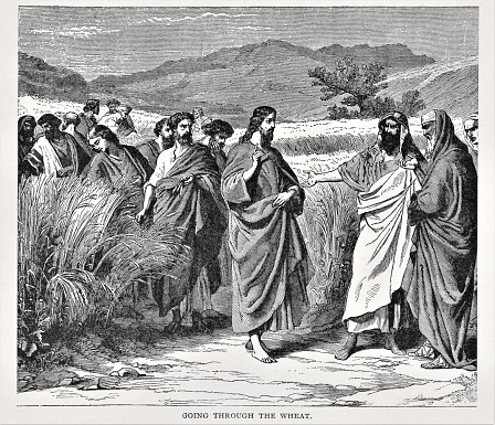 Jesus with Disciples Parable of Wheat and Tares