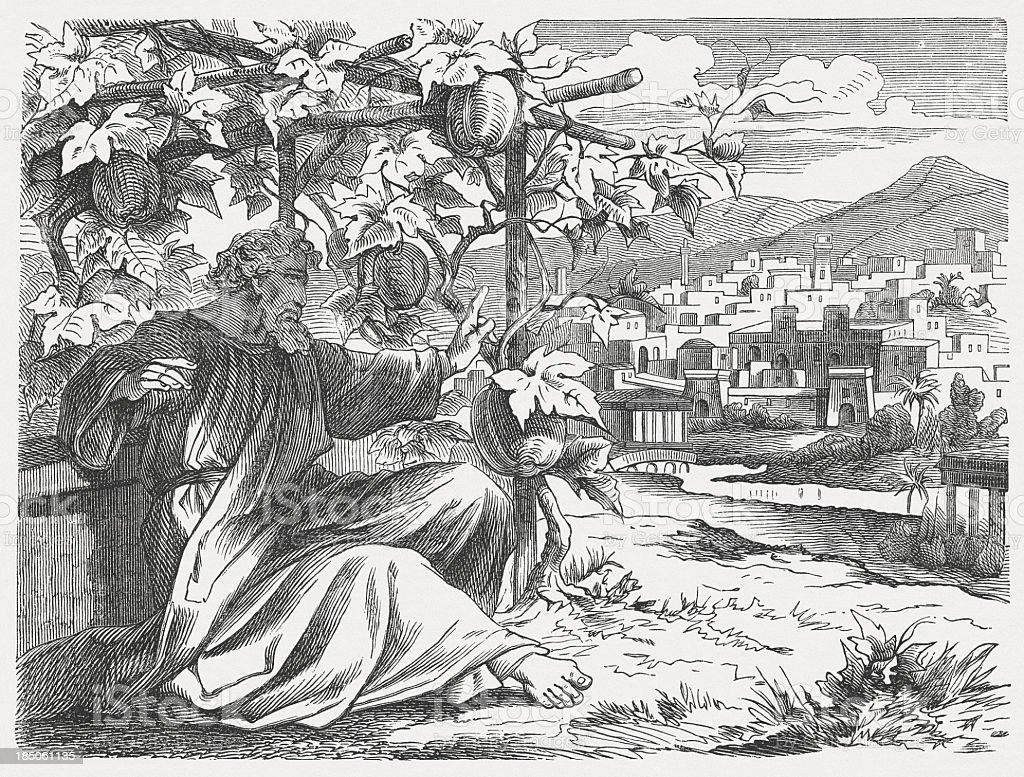 Jonah's Wrath (Jonah 4), wood engraving, published in 1877 vector art illustration