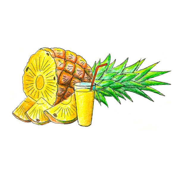 Royalty Free Pineapple Chunks Clip Art, Vector Images ...