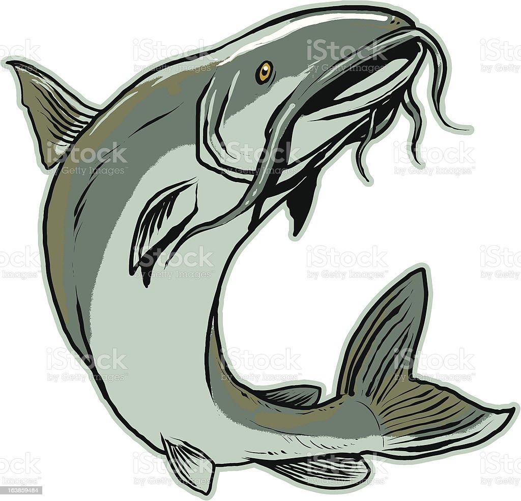 Jumping Catfish vector art illustration