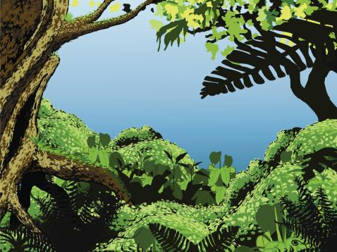 Moss stock illustrations