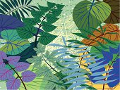 Illustration of a modestly stylised dense jungle or forest scene created using flat colours.